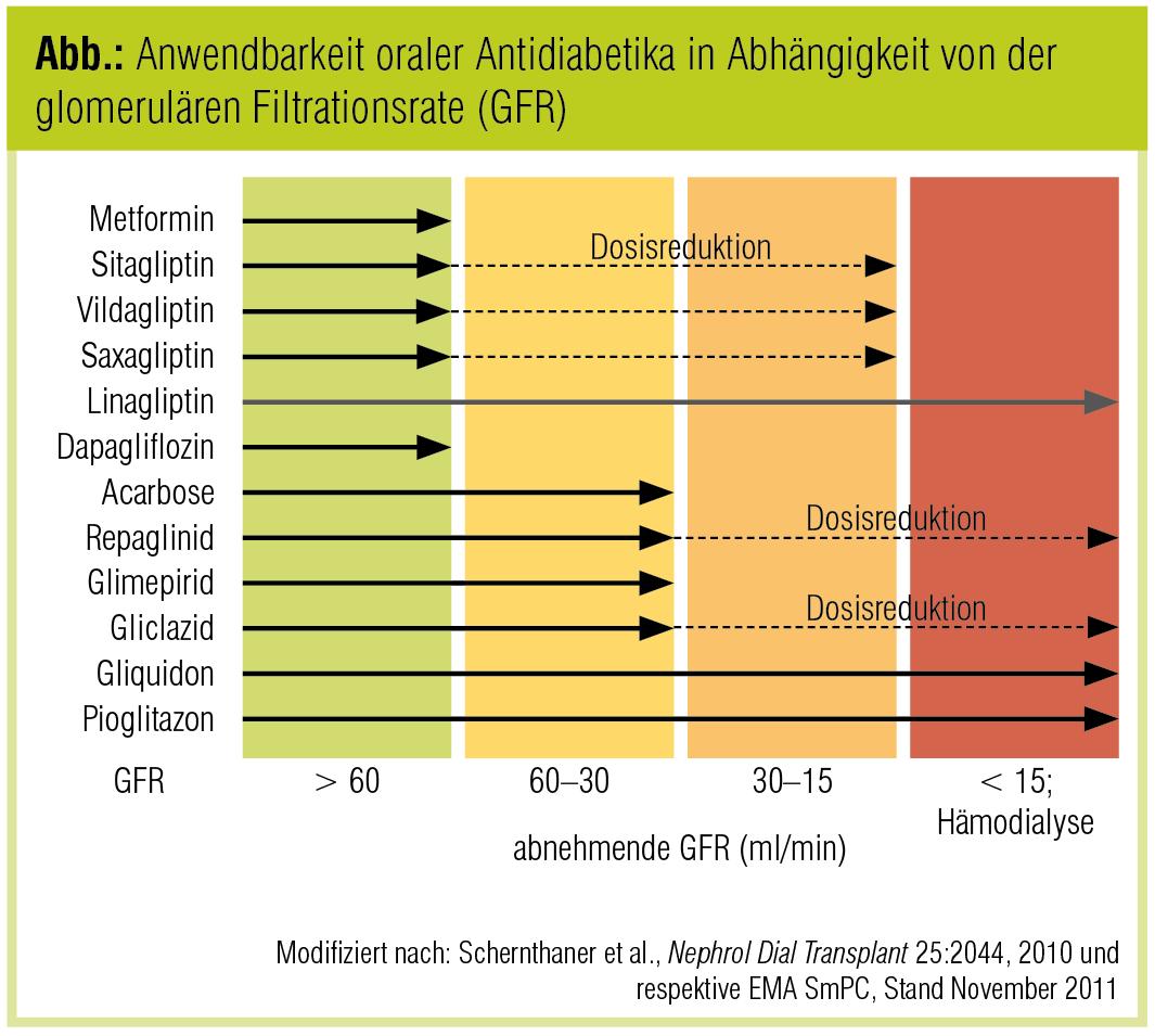 Komplexe Risikosituation bei Niereninsuffizienz   Diabetes Forum ...