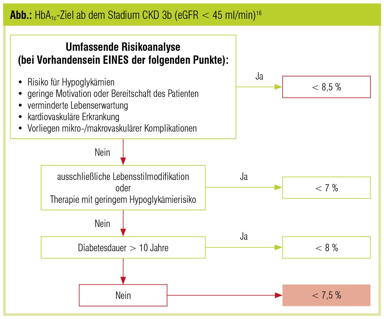 Glykämische Kontrolle bei diabetischer Nephropathie – Welche ...